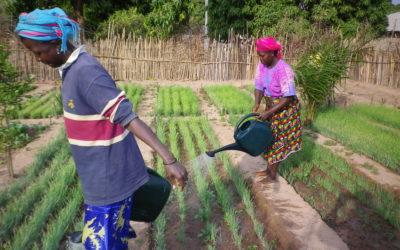 Consolidación de los instrumentos de la Red de Atención y Acompañamiento a mujeres víctimas de Violencia Basada en Género en Guinea Bissau